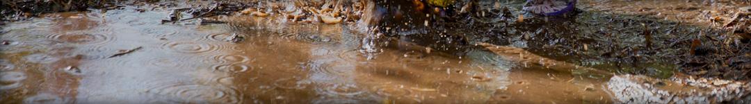 Pompe de relevage eaux chargées